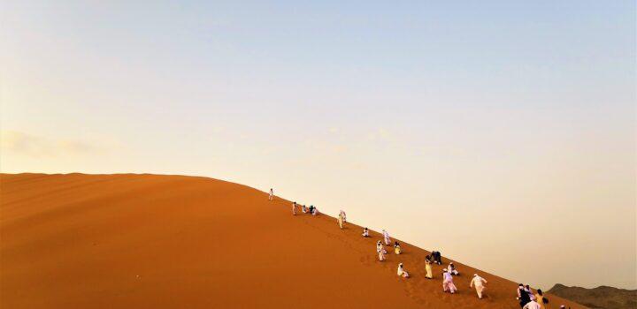 desert_libyque