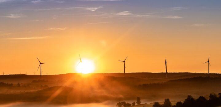 ecologie_panneaux_solaires
